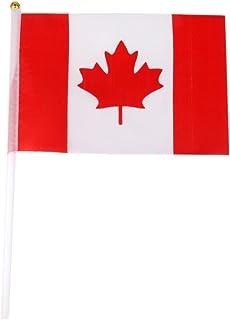 Baoblaze 12 x Banderas de Mano Nacionales de Diferentes Países