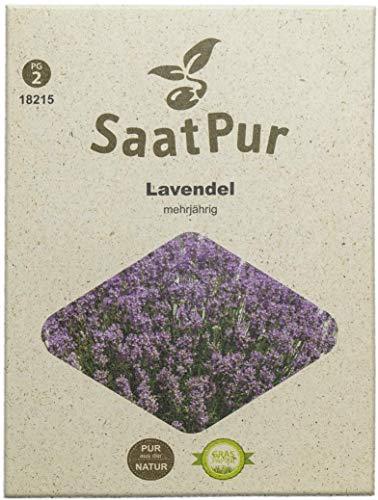 SaatPur Lavendel Samen, Saatgut für ca. 100 Pflanzen
