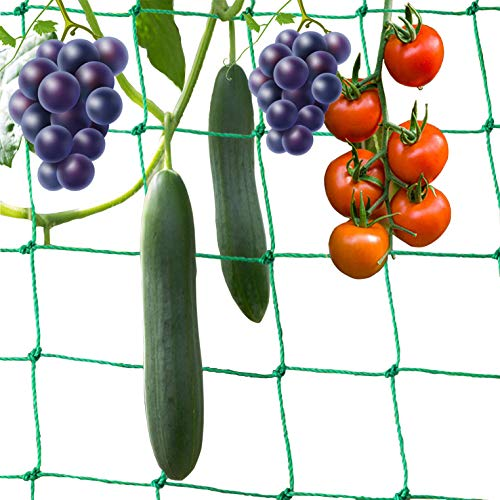 BOELLRUNO 5 * 2M Filet Plantes grimpantes Filet de Treillis pour Tomates Rcolte de Concombres Lgume Vignes Plantes Grimpantes