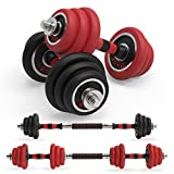 LEADNOVO Adjustable Weights Dumbbells Barbell Set, 44Lbs/20KG 3-in-1 Free Weights All Iron Dumbbells Set with Connecting Rod for Home, Gym, Office Exercise Training
