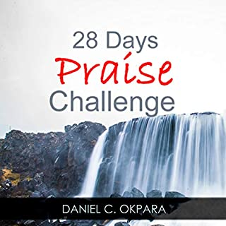 28 Days of Praise Challenge: Deal with Your Anxieties, Pains & Battles, and Release Answers to Your Prayers audiobook cover art