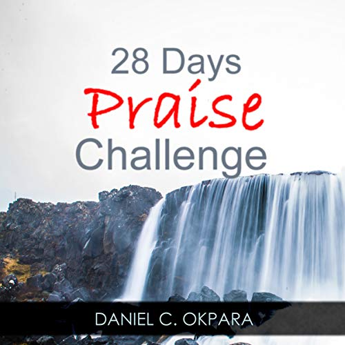 Couverture de 28 Days of Praise Challenge: Deal with Your Anxieties, Pains & Battles, and Release Answers to Your Prayers