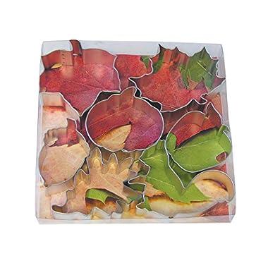 R&M International 1962 Autumn Leaf Cookie Cutters, Squirrel, Pumpkin, Acorn, Apple, Ivy, Pin Oak, Maple Leaf, 7-Piece Set