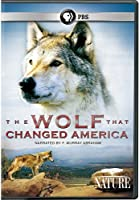 Nature: The Wolf That Changed America [DVD] [Import]
