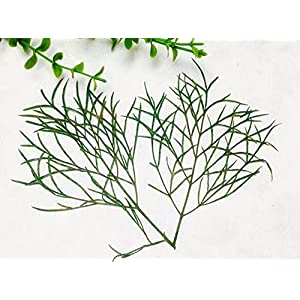 Silk Flower Arrangements Artificial and Dried Flower 120pcs Dried Pressed Cosmos Bipinnata Cav Leaf Leaves for Wedding Party Home Pendant Necklace Craft Bouquet Accessories
