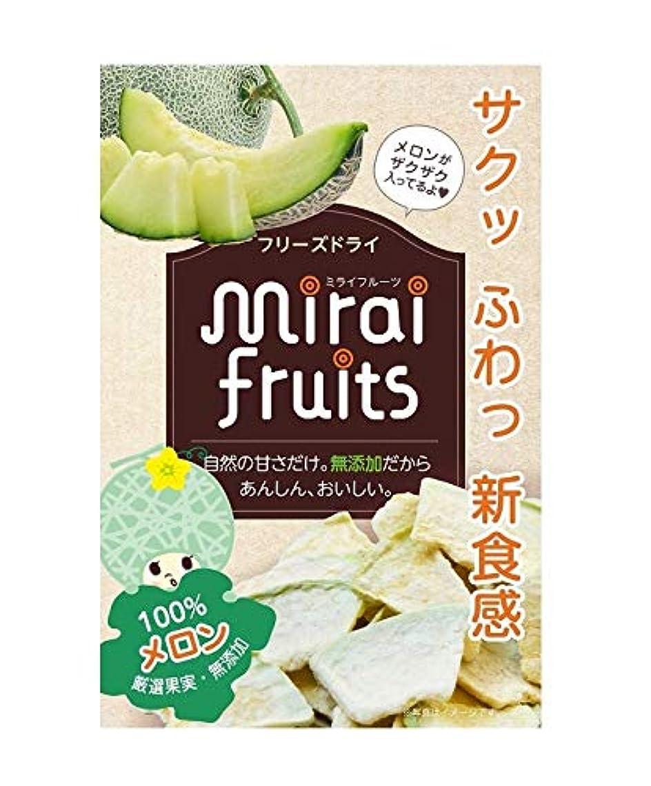 取り出すサラミ夏フリーズドライ ミライフルーツ メロン 10g(9ヶ月~)