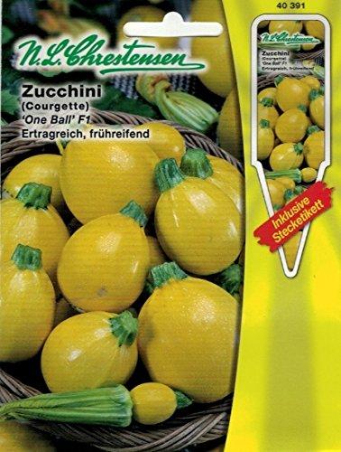 Zucchini 'One Ball' F1 goldgelb , kleinfrüchtig, ertragreich, frühreifend