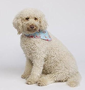 Pet Pooch Boutique Bandana Vintage pour Chien Bleu Taille M/L