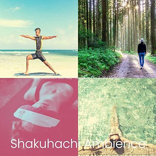 Shakuhachi Ambience