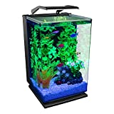 GloFish Aquarium Kit 5 Gallons, Includes Hinged Cycle Light and Hidden Filtration