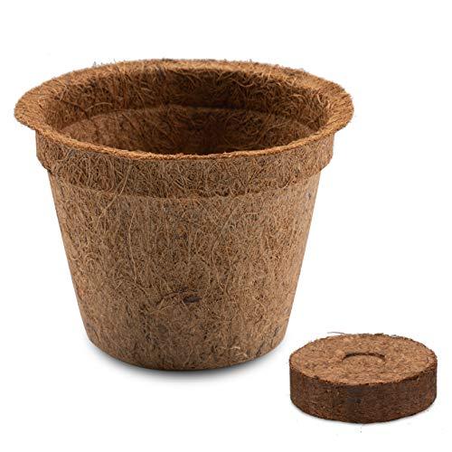HappySeed 10x Kokos Anzuchttöpfe & Quelltabletten torffrei für eine erfolgreiche Anzucht - ideal für Stecklinge & Samen - verschiedenen Größen (0,50 L - Ø 12 cm)