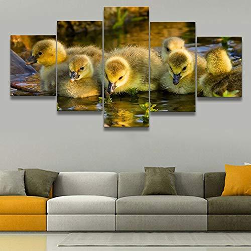 DGGDVP Een groep van The Duckling 5 stuks canvas hd afdrukken dier schilderij canvas muurkunst voor woonkamer modern canvas kunst schilderij 30x40cmx2 30x60cmx2 30x80cmx1 No Frame
