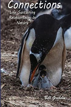 Paperback Connections: Life Sustaining Relationships In Nature Book
