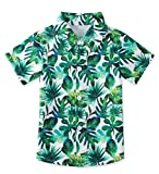 uideazone Little Boys Modern Tropical Shirts Kids Short Sleeve Dress Shirt Green Leaves Fashion Summer Tops Attractive Party Wear Clothing(3-4 Years,Leaves)