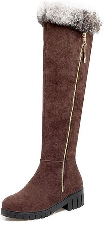 POLLYEDEN Damenmode Kniehohe Stiefel Water_resistante Freizeit Warme Pelz Reiverschluss Schuhe Winter Niedrige Ferse Schneeschuhe