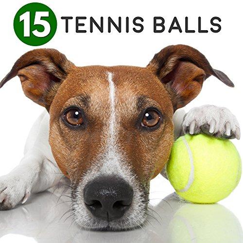 Bramble 15 Tennisbälle Gelb-Grün - Tennis Bälle & Trainingsbälle Zum Spielen für Kinder, Erwachsene & Hunde, trainingsball, Sport & Haustiere hundeballe - Tennis Ball Set & Hundespielzeug