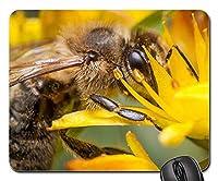 マウスパッド-蜂蜂蜜マクロ写真マクロ花粉夏1 25x30cm
