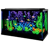 Fish Aquarium Kit 10 Gallon Kit with Filter Conditioner and Fish Food Creates A Visually Stunning Experience - Skroutz Deals