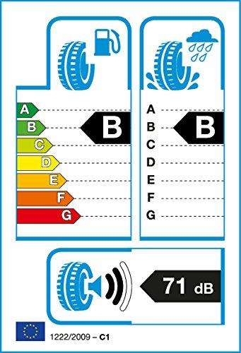 ROADSTONE Eurovis SP 04–255/35/R19 96 W – B/B 71dB – Pneu d'été