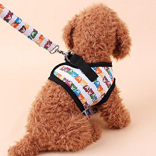 KINLO ハーネス&リードセット 散歩 が楽しくなる選べる カラフルくま柄 胸あて式 犬用リード 小型犬 介護 ...