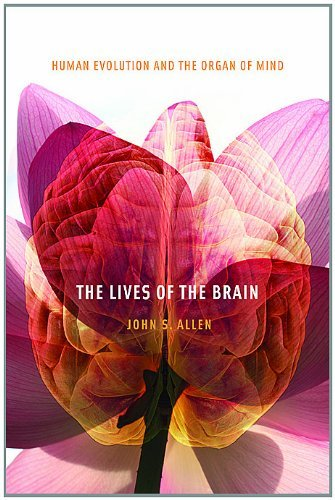The Lives of the Brain: Human Evolution and the Organ of Mind (English Edition)