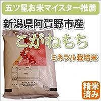 新潟県阿賀野市産ミネラル栽培米「こがねもち」450g