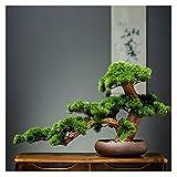 Bonsai Artificial Simulación Bienvenido Pine Bonsai Oficina Verde Planta Decoración Artificial Árbol en maceta para la sala de estar Oficina Tienda Decoración de riqueza plantas falsas