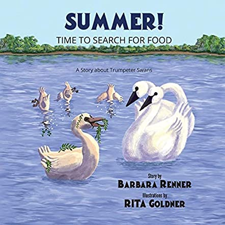 Summer! Time to Search for Food