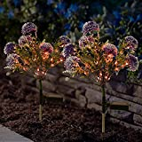 Doingart 2Pcs Outdoor Solar Garden Stake Lights, Multi-Color Solar Powered LED Garden Lights,19Inch Decorative Dandelion Flower Lights for Garden, Patio, Yard, Pathway (Purple )