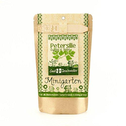 Minigarten Petersilie