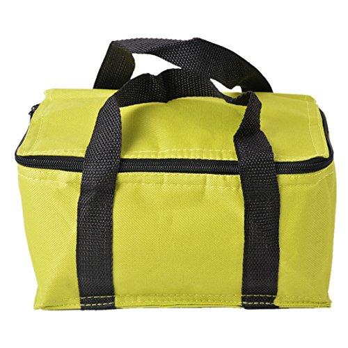 Ryoizen Kühltasche, Eistasche, faltbar Picknicktasche Lunch Tasche, Oxford Cloth Thermotasche für Büro, Picknick, Grillfeste, Camping, Beach, Auto, Outdoor Reisen 14 cm x 12 cm x 22 cm