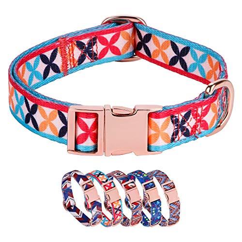 Rhea Rose Hundehalsband mit Metallschnalle, D-Ring, verstellbar, für kleine, mittelgroße und große Hunde (Halsumfang 27,9 cm - 39,9 cm, Breite 1,6 cm), Flora)