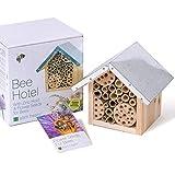 Plant Theatre - Casetta per Le api e Semi per Fiori per Le api, Eccellente Idea Regalo