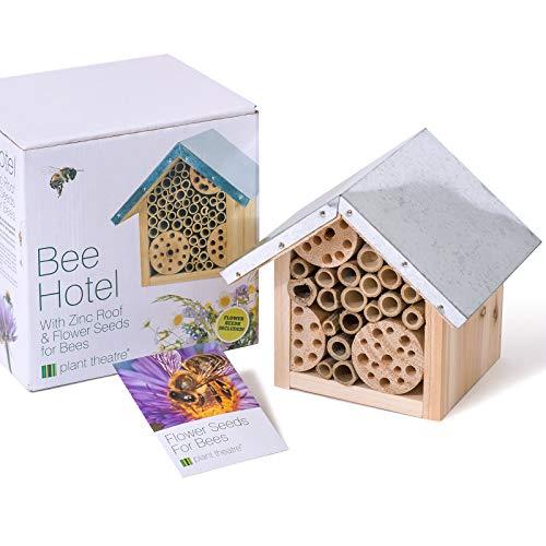 pas cher un bon Hôtels de théâtre pour les abeilles et excellentes idées cadeaux pour planter des graines de fleurs pour les abeilles