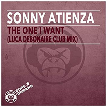 The One I Want (Luca Debonaire Club Mix)
