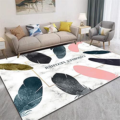 Color Pluma patrón HD impresión Humedad Absorbente cómodo pie sentimiento cómodo Textura Claro Dormitorio salón alfombra-40x60cm Estar Alfombra para Decoración Interior Diseño para Sala De Esta