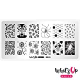 Whats Up Nails - B029 Picnic in the Park Stamping Plate for Nail Art Design