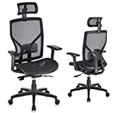 SUNNOW Ergonomic Office Chair Computer Mesh Chair with Adjustable Lumbar Support, Sliding Seat, Headrest, 3D Armrest-High Back Swivel Task Executive Chair for Home Office