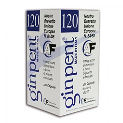GINPENT 120CPS 400MG