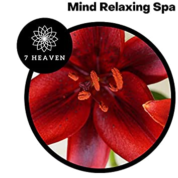 Mind Relaxing Spa
