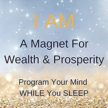 I Am a Magnet for Wealth & Prosperity (Program Your Mind While You Sleep)