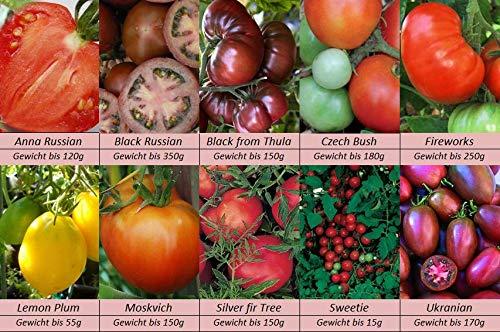Tomatensamen, 10 alte Russische Sorten, Samen Set