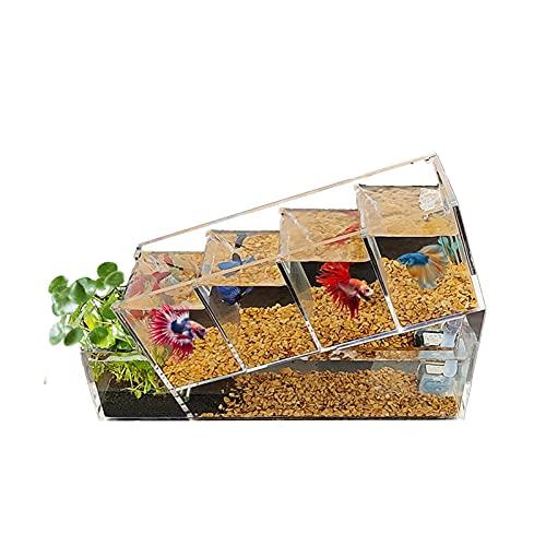 Réservoir de poissons isolé Aquarium Acrylique Boîte d'isolement pour poissons Boîte d'élevage de poissons Acclimatation Écloserie Incubateur Éclosion d'alevins, Eau facile à changer Convient pour la