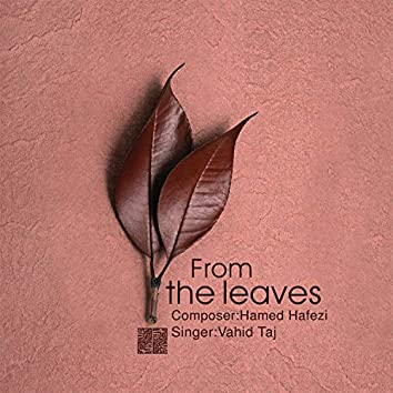 From the leaves (Acoustic Version)