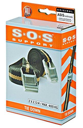ASIS nettrade Spanngurt Spannband Zurrgurt mit Klemmverschluss 1 Set = 2 Stück - 2x2,5m - hält stabil und sicher (2 Stück)