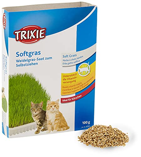 TRIXIE Herbe Tendre pour Chat