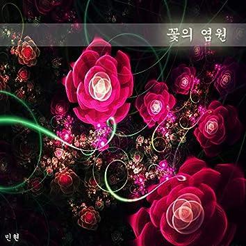 꽃의 염원