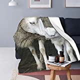 Sheep and Lamb Fleece Throw Blanket   Super Soft, Microfiber Fleece Blanket Throw   Luxurious Tv Blanket for Couch Sofa 60X50 Inch