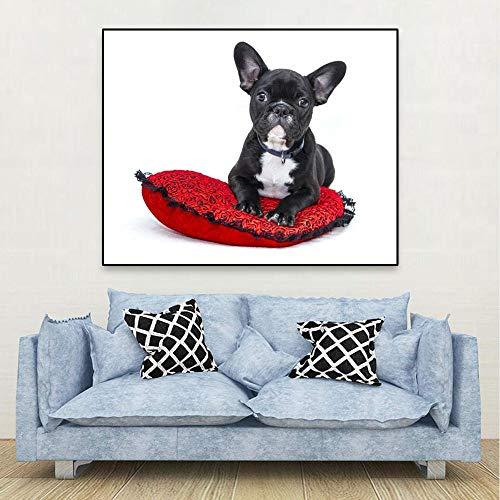 SSHABC Precioso Animal Mascota Pared Lienzo póster Pintura Perro Toro Negro con Imagen de Almohada Estilo Moderno para Sala de Estar decoración del hogar-50x50cm-sin Marco