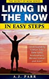 Living in The Now in Easy Steps (Understanding Eckhart Tolle, Dalai Lama, Krishnamurti, Meister Eckhart and more!): 7 Lessons & Exercises to Stop Your ... Live in The Now! (The Secret of Now Book 1)